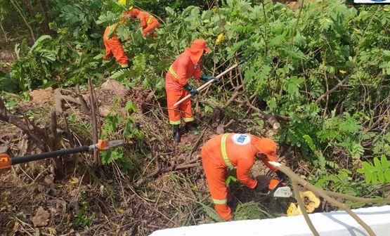Prefeitura realiza mutirão de limpeza nos riachos de Imperatriz