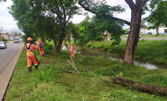 Prefeitura dá continuidade aos serviços de limpeza na BR-010